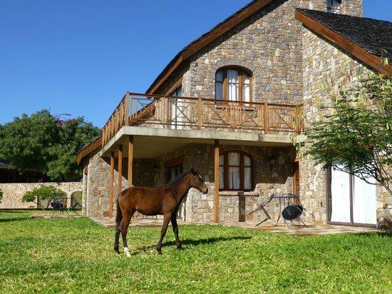 Notre bungalow picture of le jardin du roy isalo for Bd du jardin botanique 50