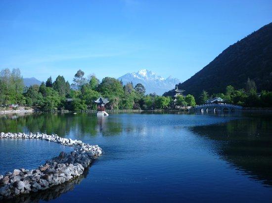 Black Dragon Pond Park