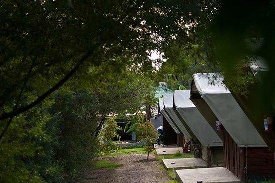Tri Active Lodge: Safari Tents