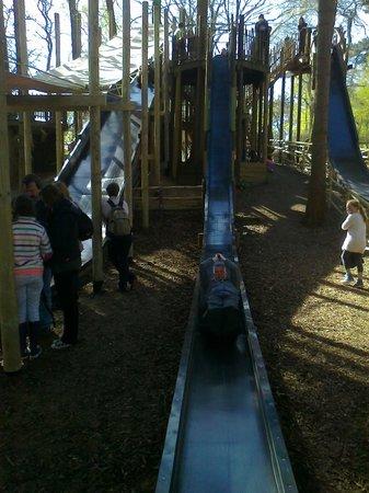 BeWILDerwood: Super Slides