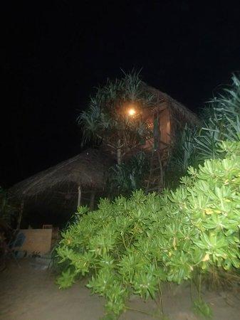 Cinnabar Resort : Tree house
