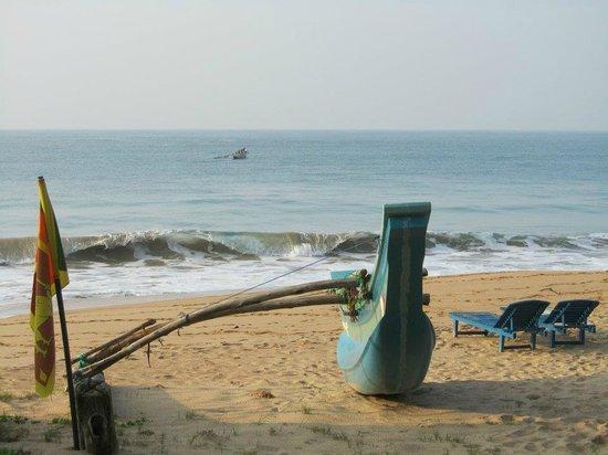 Turtle Beach Cabanas : Devant les deux bungalows