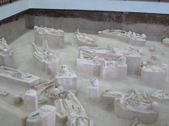 El Chorro de Maita Museum: Skeletons