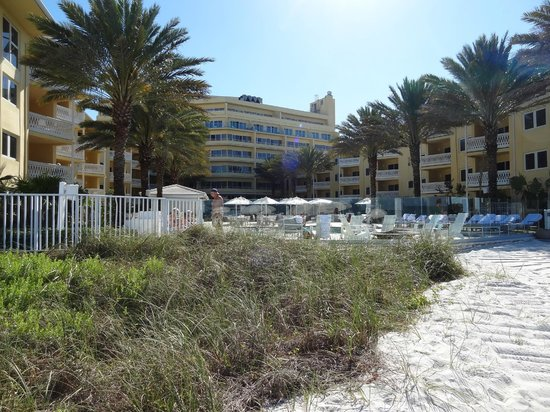 Edgewater Beach Hotel: vista desde la playa