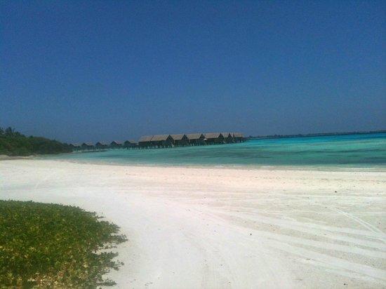 Shangri-La's Villingili Resort and Spa Maldives : view of the water villa's