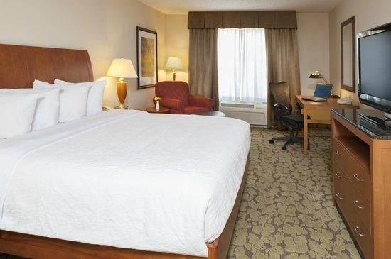Hilton Garden Inn St. Paul/Oakdale: King Bed Room