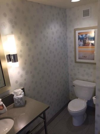 SpringHill Suites Denver Downtown : Clean, well laid out bathroom