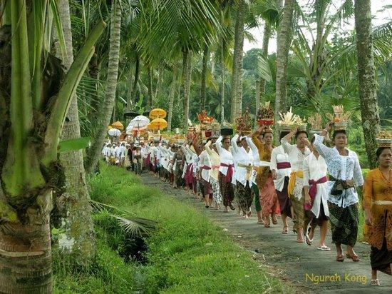 Nengah Bali Tour