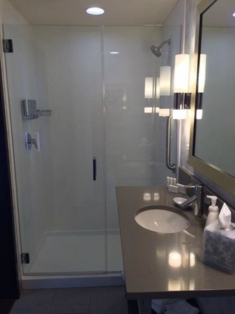 SpringHill Suites Denver Downtown : Shower controls on opposite side of shower head