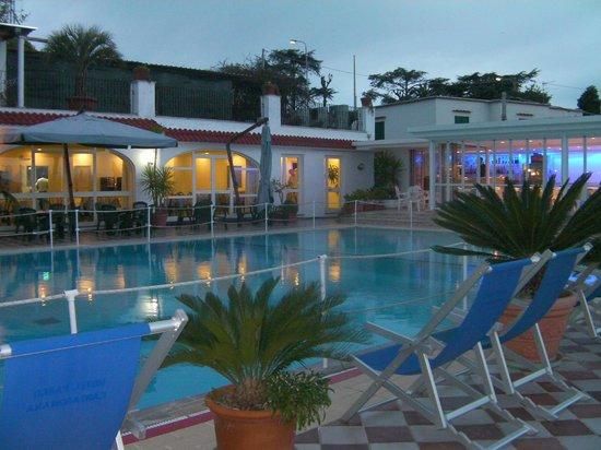 Hotel Parco Cartaromana: Piscina