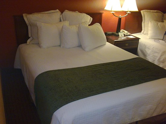 BEST WESTERN PLUS Hotel & Conference Center: Room I stayed