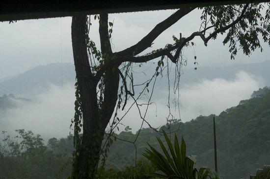 Villa Vanilla / Rainforest Spices : View from the tasting center