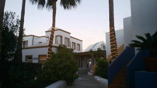 Apartamentos THe Morromar: Hotel garden