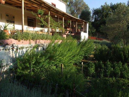 Maravel Garden Spili Crete