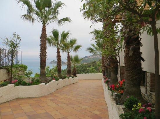 Hotel Antares: Vista su Taormina e Isola Bella
