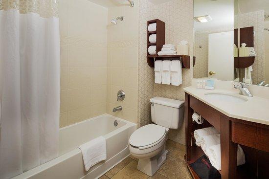 Hampton Inn Madison East Towne Mall Area : Standard Bathroom