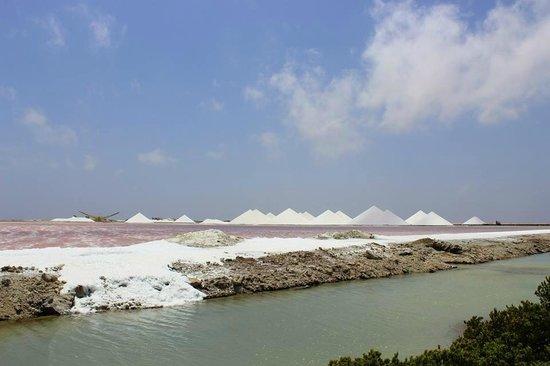 Achie Tours & Transport: Salt Mines