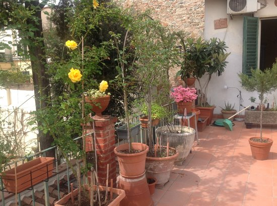 Hotel Il Bargellino: Our Terrace blossoming