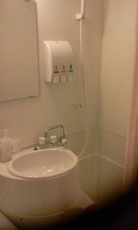 Toyohashi Green Hotel: やや水圧が低いかも