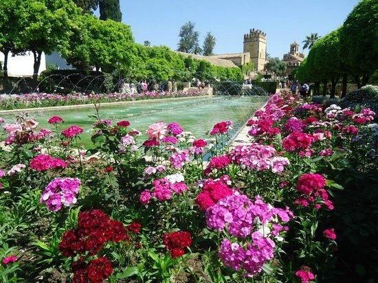 Alcazar de los Reyes Cristianos: Jardines del Alcázar de Cordoba