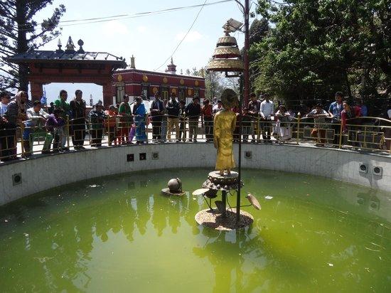 Swayambhunath Temple: The pond