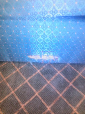 Motel 6 Tulsa Airport #4696: Rip in fabric of couch