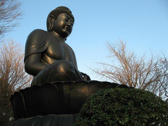 Jorenji Temple (Tokyo Daibutsu): Дайбуцу
