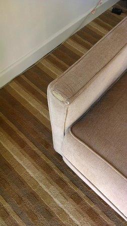 El Conquistador Resort, A Waldorf Astoria Resort: Ripped Couch