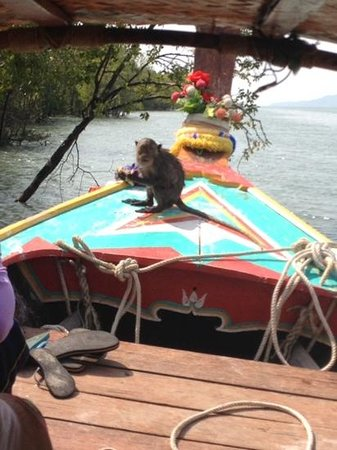 Twin Bay Resort: Tifffany Lanta longboat cruise
