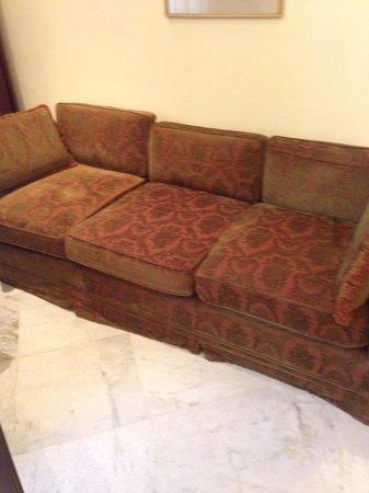 Taj SMS Hotel: Sofas