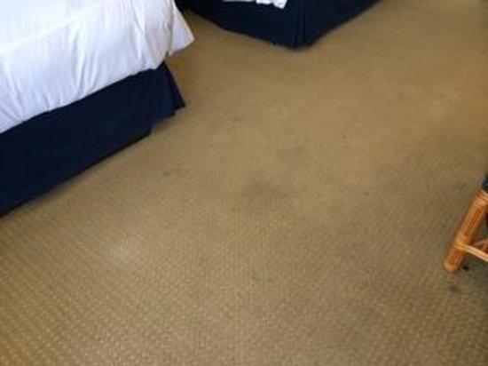 Pavilion Hotel: carpet