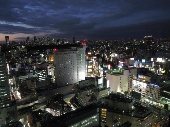 Cerulean Tower Tokyu Hotel: View from the room!