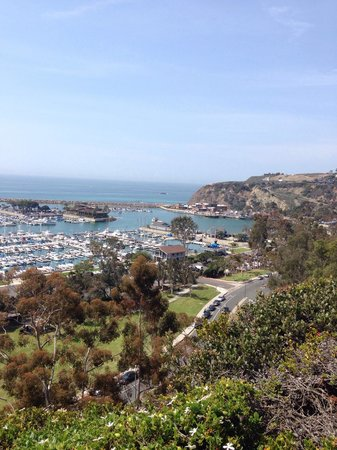 Dana Point Harbor from Bluff Top Trail