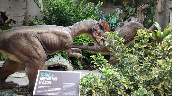 Dinosaurios en Parque Explora