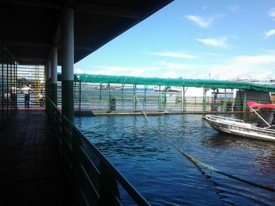 Floating Dock : Porto na cheia