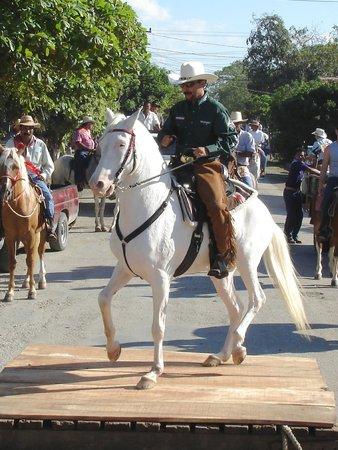 Casagua Horses Tours: Tope Parade - Esteban Peraza and Conejo