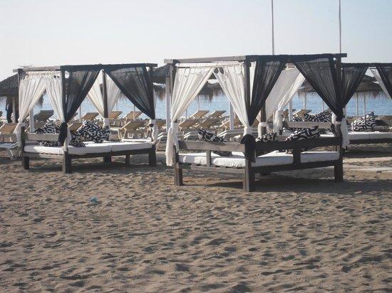 Marconfort Beach Club Hotel: Playa