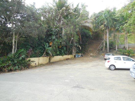 Ceiba Country Inn: front