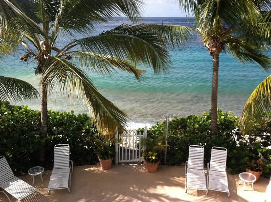 Coconut Coast Villas: View
