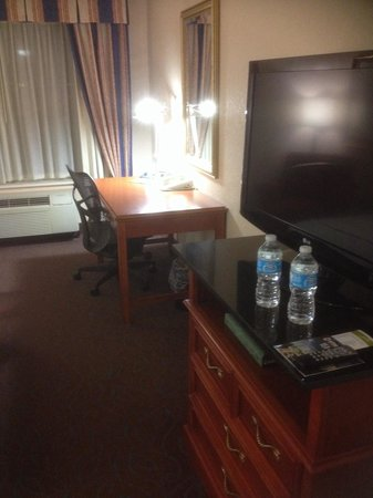 Hilton Garden Inn Detroit Metro Airport: Excellent work area