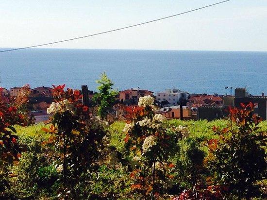 Agriturismo Azzurra Biricchina: Panorama