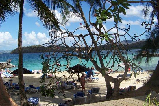 Carayou Hotel & Spa : Magnifique  vue  de la plage   avec la  mer des Caraibes  aux couleurs   magnifiques ...