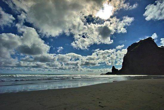 Bush and Beach : Piha beach