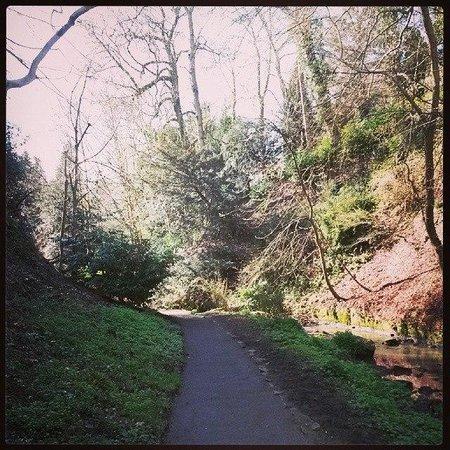 Pittencrieff Park: River Walk Pittencrief