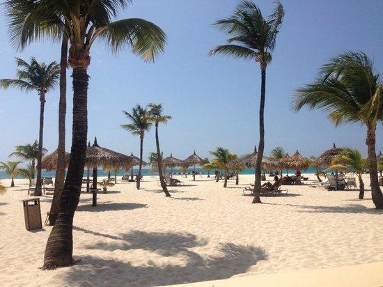 Manchebo Beach Resort & Spa : Manchebo Resort