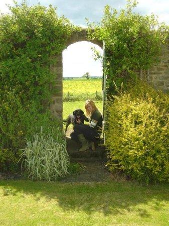 Mill Close Farm: Garden
