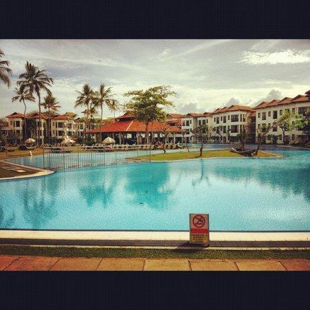 Club Hotel Dolphin : pool area