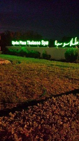 Djerba Plaza Hotel & Spa: Entrée