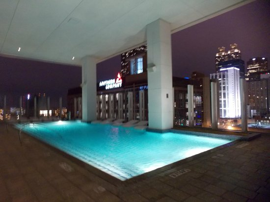 W Atlanta Downtown: Best looking pool I've seen!!