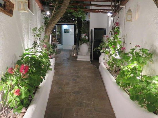 Avra Restaurant - Garden : Entrance.